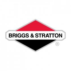 Varikliai BRIGGS & STRATTON